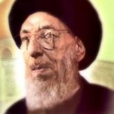 محسن الحكيم