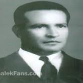 عبد الرحمن فوزي