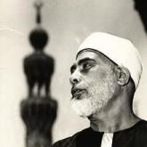 محمود الحصري
